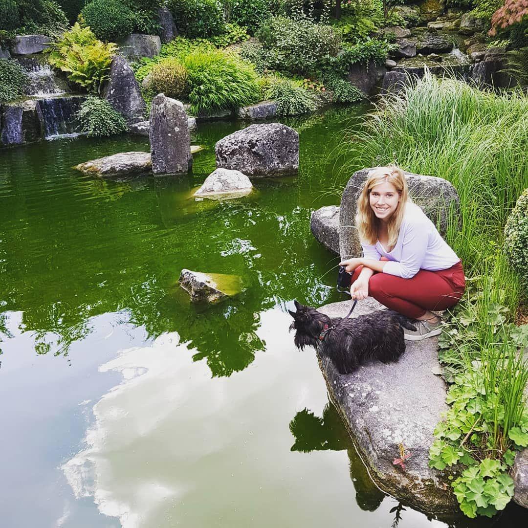 Japanischer Garten Altes Landesgartenschau Gelande In Wurzburg Scottieliebtkeu Keukarpfen Japanischergarten S Japanischer Garten Garten Landesgartenschau