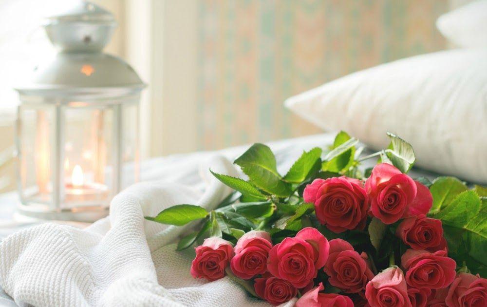 Gambar Bunga Yg Romantis Berniat Memberi Bunga Mawar Pada Seseorang Ketahui Dulu Masing Smartfren Store Bunga Bunga Romantis Untu Gambar Bunga Bunga Gambar