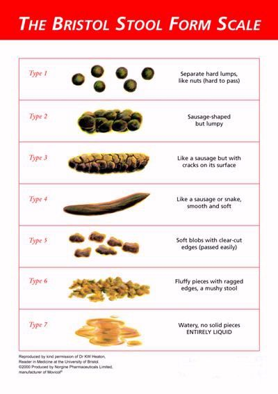 The Bristol Stool Form Scale or Bristol Stool Chart is a seven - stool color chart