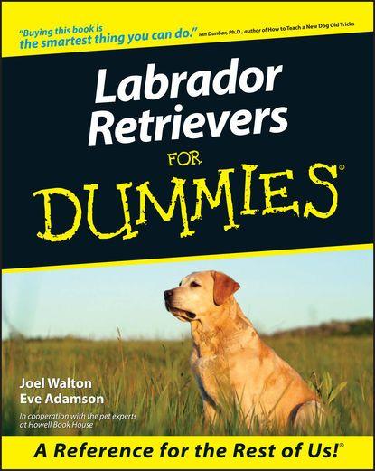 Labrador Retrievers For Dummies Walton Eve Adamson Labrador Retrievers For Dummies Walton Eve Labrador Retriever Dog Training Obedience Labrador