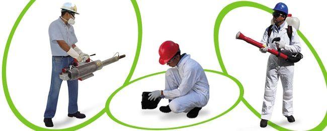 Control de plagas sants http www for Control de plagas tenerife