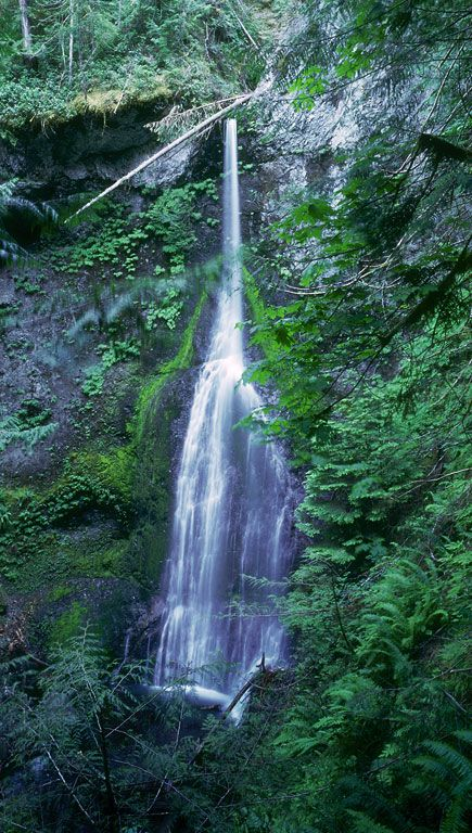 The falls is off US Highway 101 about 22 miles west of Port Angeles or about 38 miles east of Forks along the shore of Lake Crescent. Park at the Storm King Visitor Center and follow the signs.