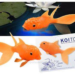 Light-Up Koi Goldfish