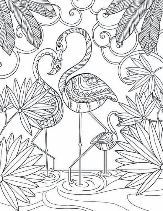 2215fdee6e97cb1720f971437a15bd3c.jpg (552×713) | Flamingo drawing ...