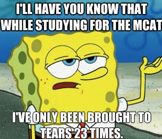 25 Apps Every College Student Should Have Society19 Funny Spongebob Memes Funny Relationship Memes Spongebob Memes