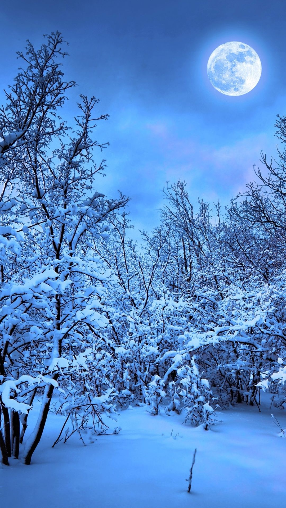 Winter Snow Nature 4k In 1080x1920 Resolution Iphone Wallpaper Winter Snow Wallpaper Iphone Iphone 5s Wallpaper