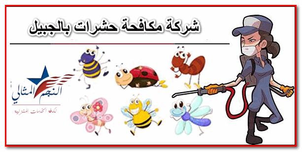 أصبحت شركة مكافحة حشرات بالجبيل هي الأبرز في عالم مكافحة الحشرات بعد أن ذاع صيتها وتوصلت إلى أحدث طرق مكافحة جميع أنواع الحشرات وإبادتها بشكل نهائ Insect Control