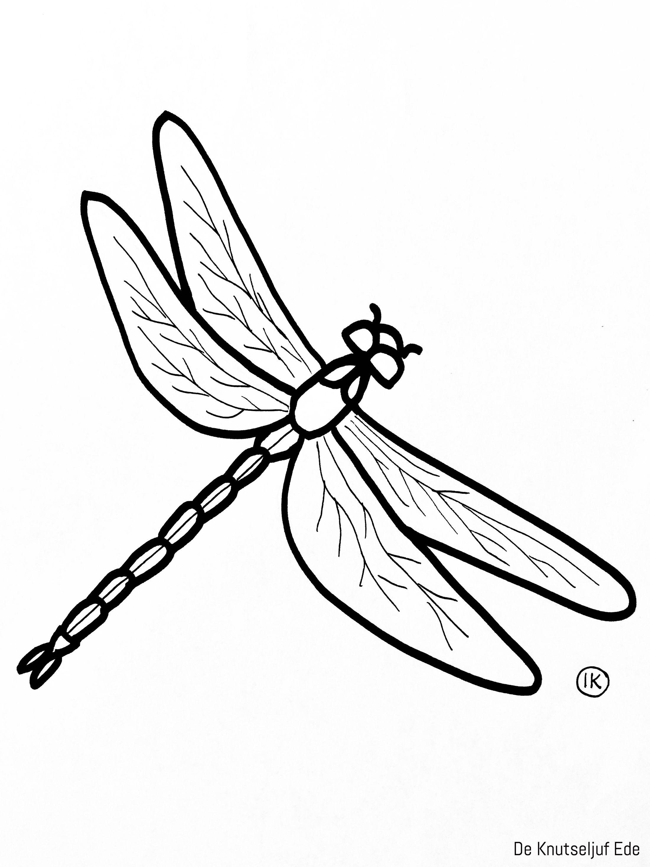 Kleurplaten Kriebelbeestjes Insekten Kleurplaat Kleurplaten Deknutseljuf Sprinkhaan De Knutseljuf E Kleurplaten Insect Knutselen Gratis Kleurplaten