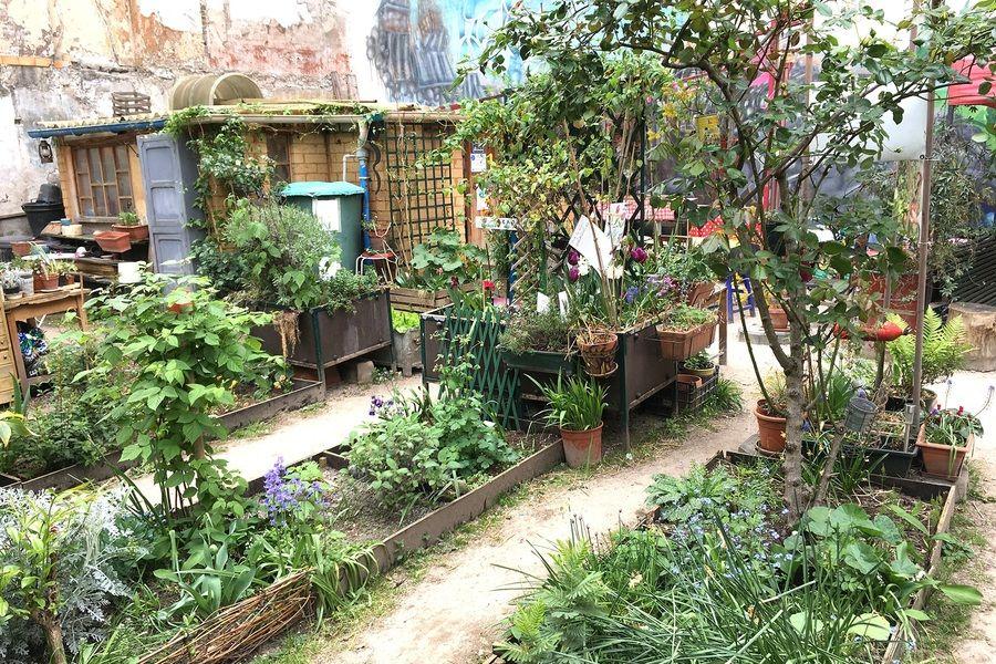 Comment Participer A Un Jardin Partage En 2020 Jardins Incroyables Comestibles Lieux