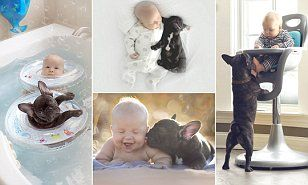 Little Boy And His French Bulldog Nap Eat And Even Bathe Together - Ivette ivens baby bulldog