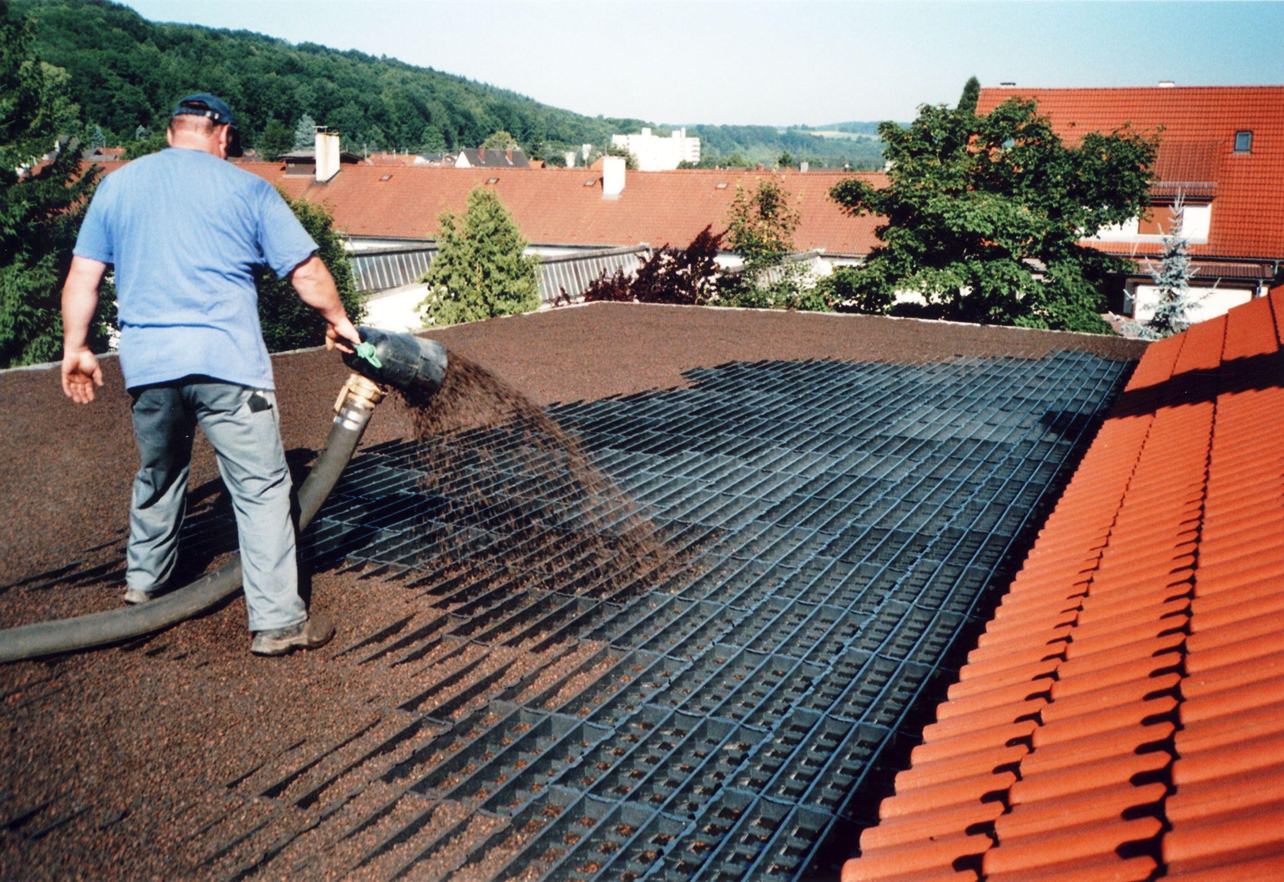 Core Roof Green Roof Installation Green Roof Garden Buildings