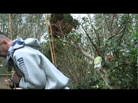how to build a sweat lodge in your garden - YouTube ...