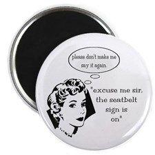 Seatbelt Magnet
