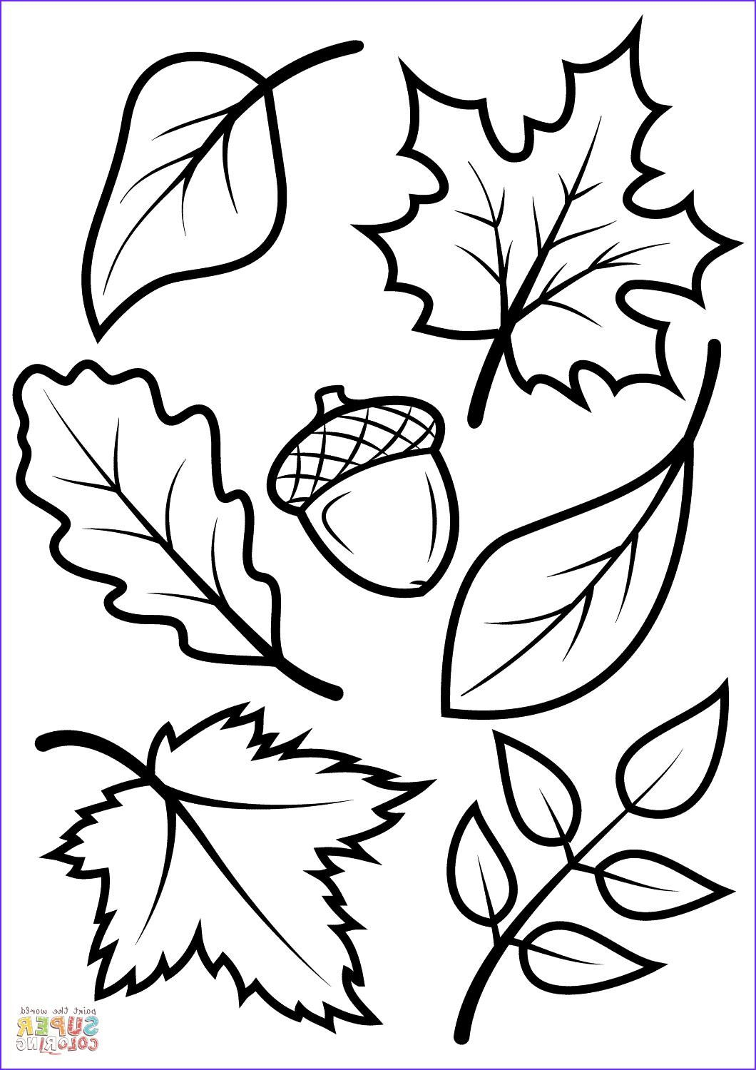 Fall Leaves Coloring Pages Printables