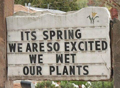 Aren't we all!!!