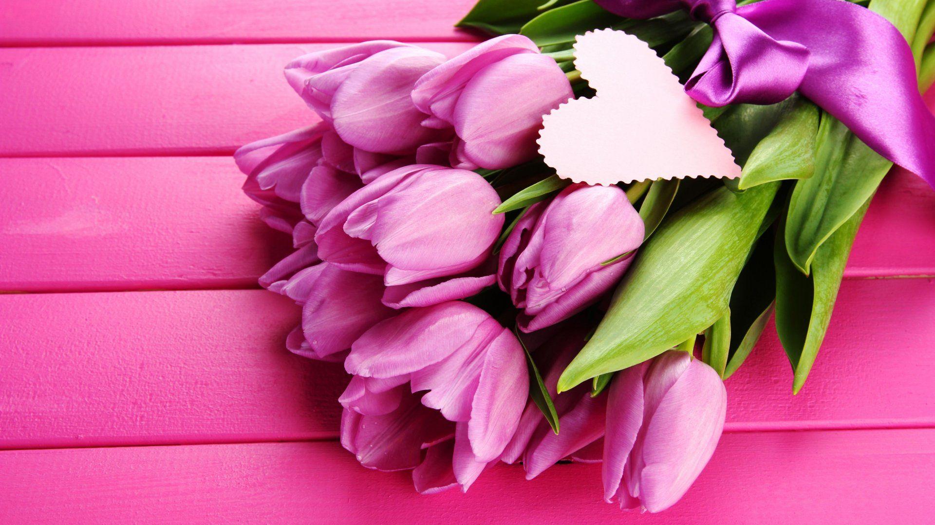 Violet Tulips Bouquet | Tulipani, Sfondi rosa e Sfondi