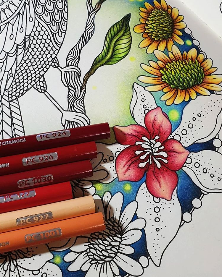 Instagram In 2020 Coloring Book Art Coloring Books Flower Doodles