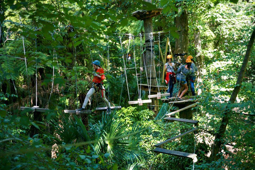 Trees Adventure High Ropes Course 200 Springwood Rd