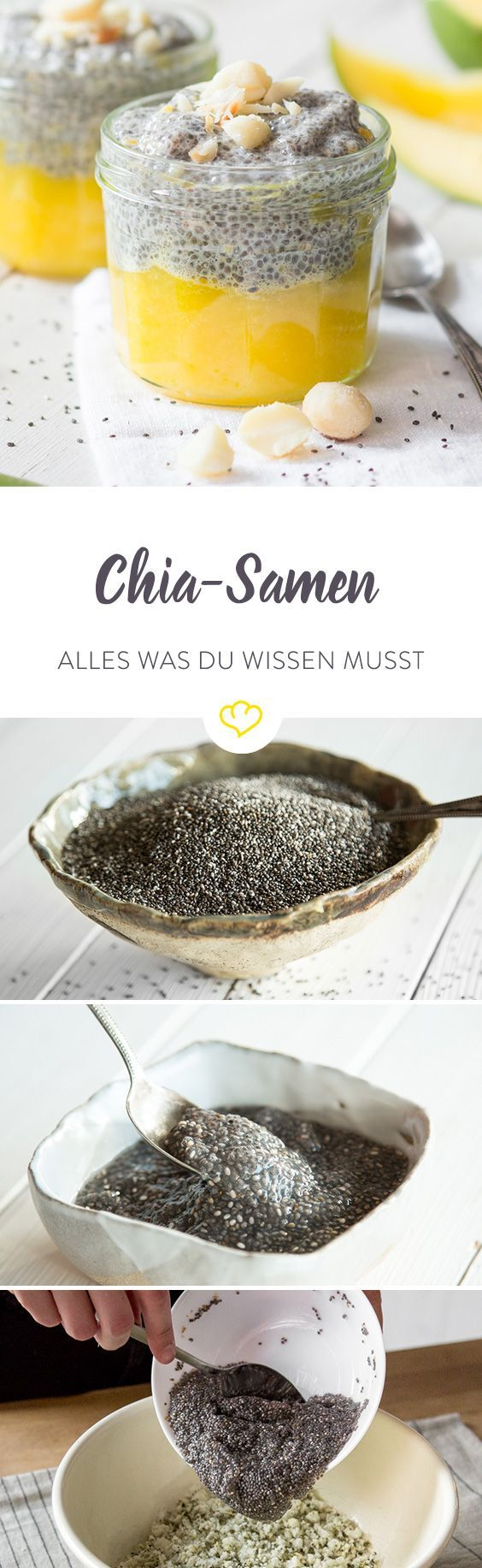 chia samen so bereitest du die powerk rner zu chia samen rezepte pinterest essen m sli. Black Bedroom Furniture Sets. Home Design Ideas