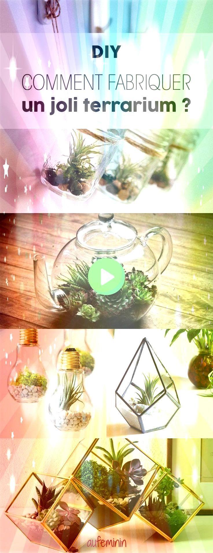 einfach selbst aus verschiedenen Gläsern herstellen und anpflanzen Terrarium einfach selbst aus verschiedenen Gläsern herstellen und anpflanzen Terrarium einfac...