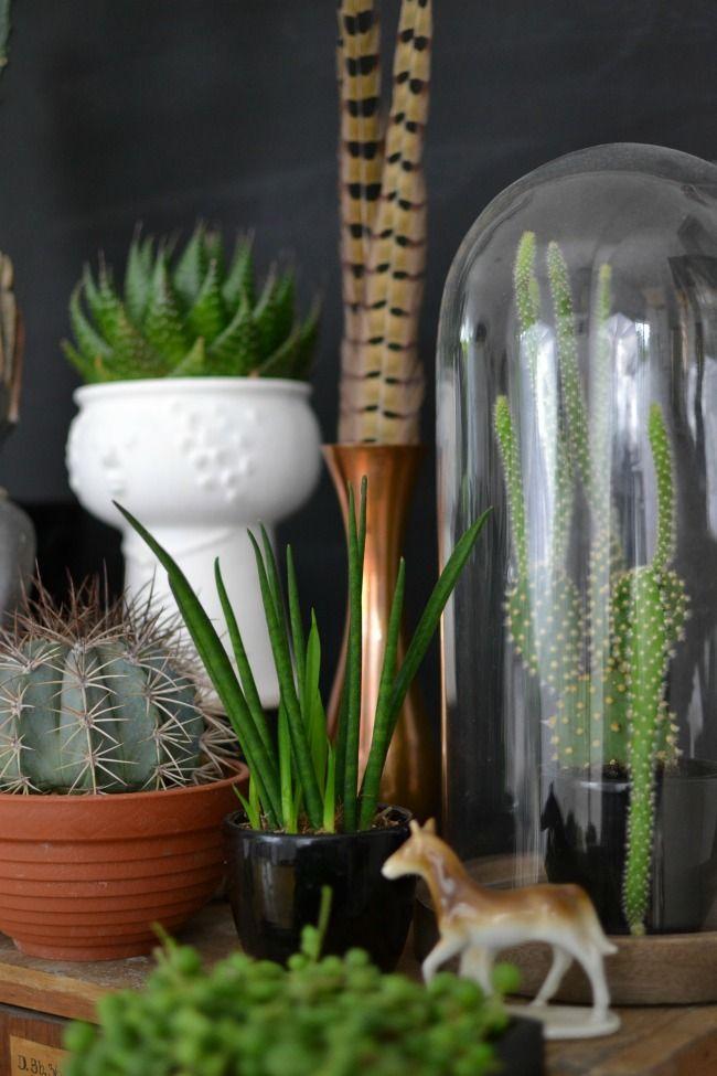 Wohnblog: Wohnideen, Dekoideen, Einrichtungsideen, Einrichten ...