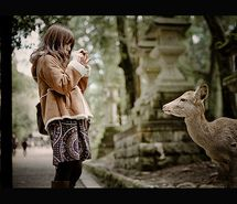 Inspiring picture animal, cute, mori girl, mori kei, mori lifestyle. Resolution: 500x500 px. Find the picture to your taste!