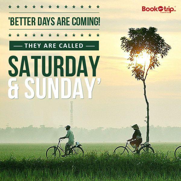 #saturdaymorning  #SundaySwings