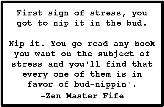 Poems & Quotes Finder: Barney Fife - Zen Master Quotes