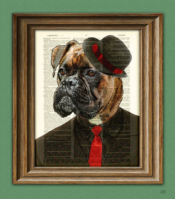 Cyrus The Zoot Suit Boxer Dog Mobster With Hat Illustration