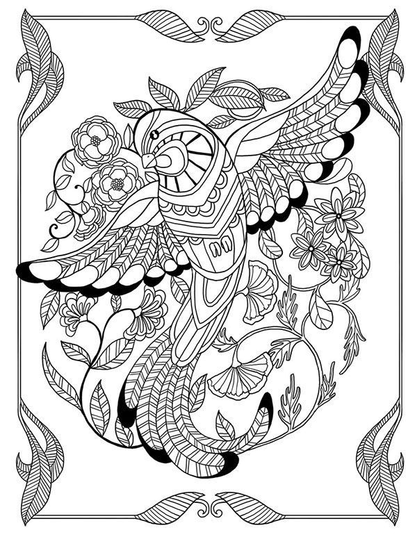 Another cute picture from Bestadultcoloringbooks! Adult coloring is - best of coloring pages adults birds
