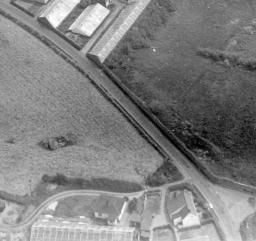 Unlocated, Guernsey, 1951.   Britain from Above