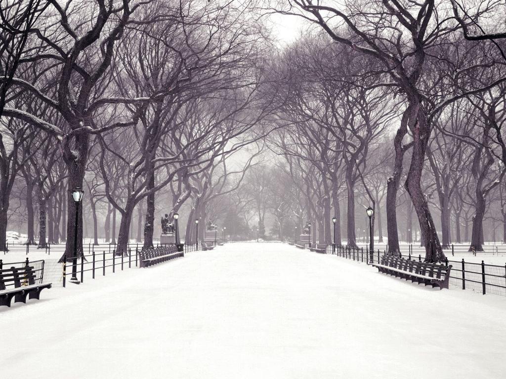 Google Image Result For Http Gamesandwallpapers Amazing Planet Net Slike Wall Central Park Winter New York Christmas Winter