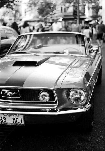 An Entry From Maja Cars Ford Mustang And Ford