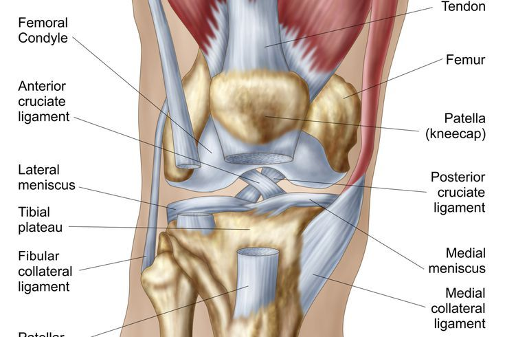 Do You Know What Could Be Causing Your Knee Pain? | Knee pain