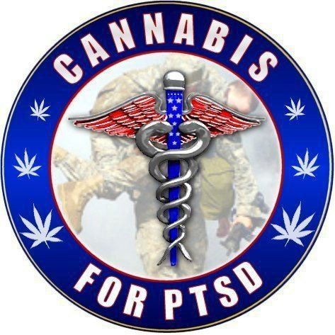 Vets aren't the only ones who acquire PTSD. ALL PTSD patients need the help of cannabis, as it has been proven to lower suicide rates and ease the horrors of PTSD in those who have suffered child abuse or any other kind of trauma. Cannabis helps ALL PTSD. Cannabis stops suicides. Cannabis saves lives and improves the quality of life for those suffering from past trauma!