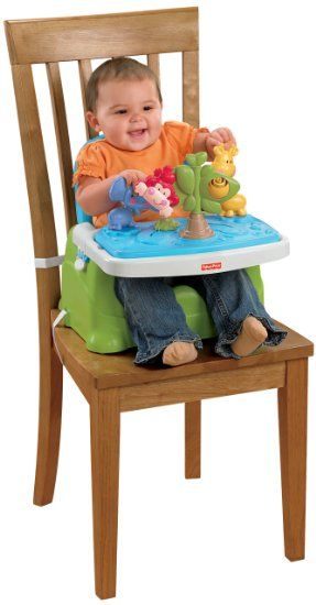 Fisher-Price Discover 'n Grow Busy Baby Booster on Amazon ...