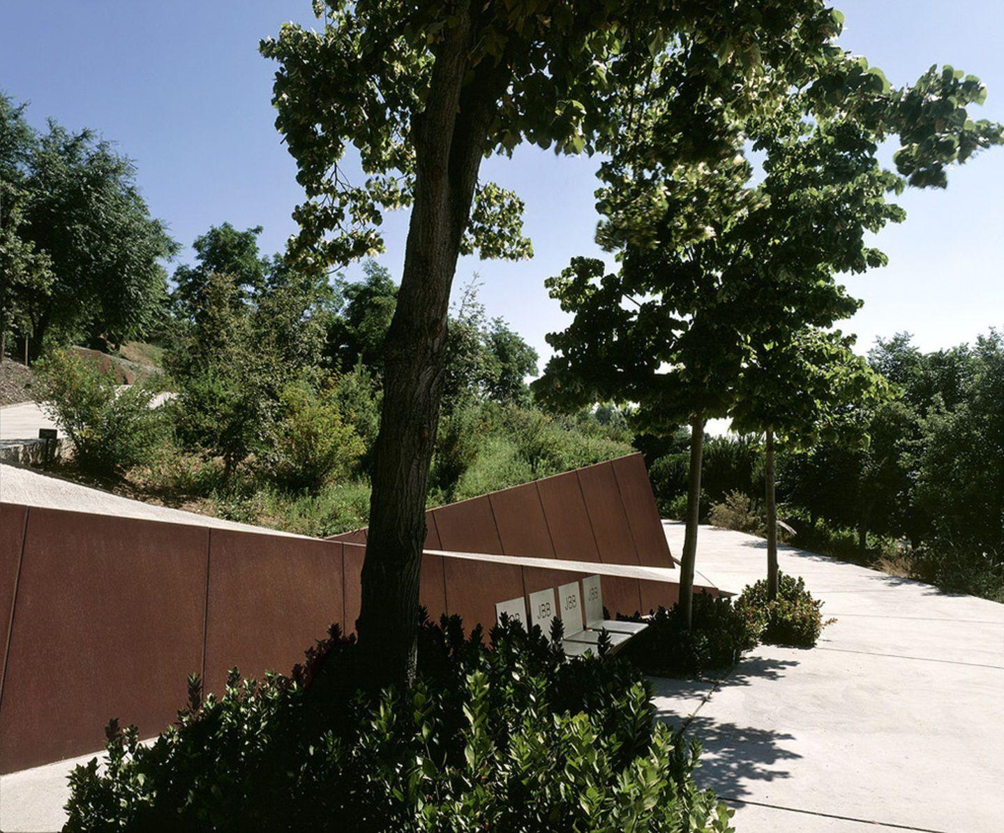 El nuevo jard n bot nico se construye en la vertiente for Jardin botanico montjuic