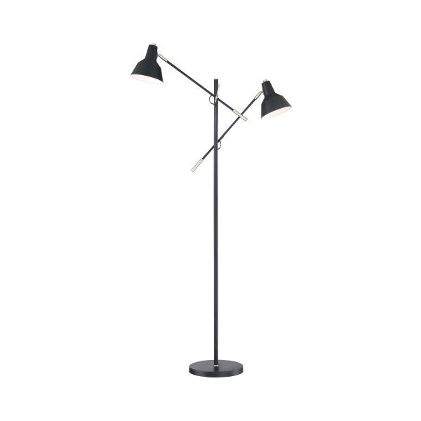 Lite source ls 83102 tremont 2 light 65 high boom arm floor lamp lite source ls 83102 tremont 2 light 65 high boom arm floor lamp 164 liked on polyvore featuring home lighting floor lamps lamps matt black mozeypictures Image collections
