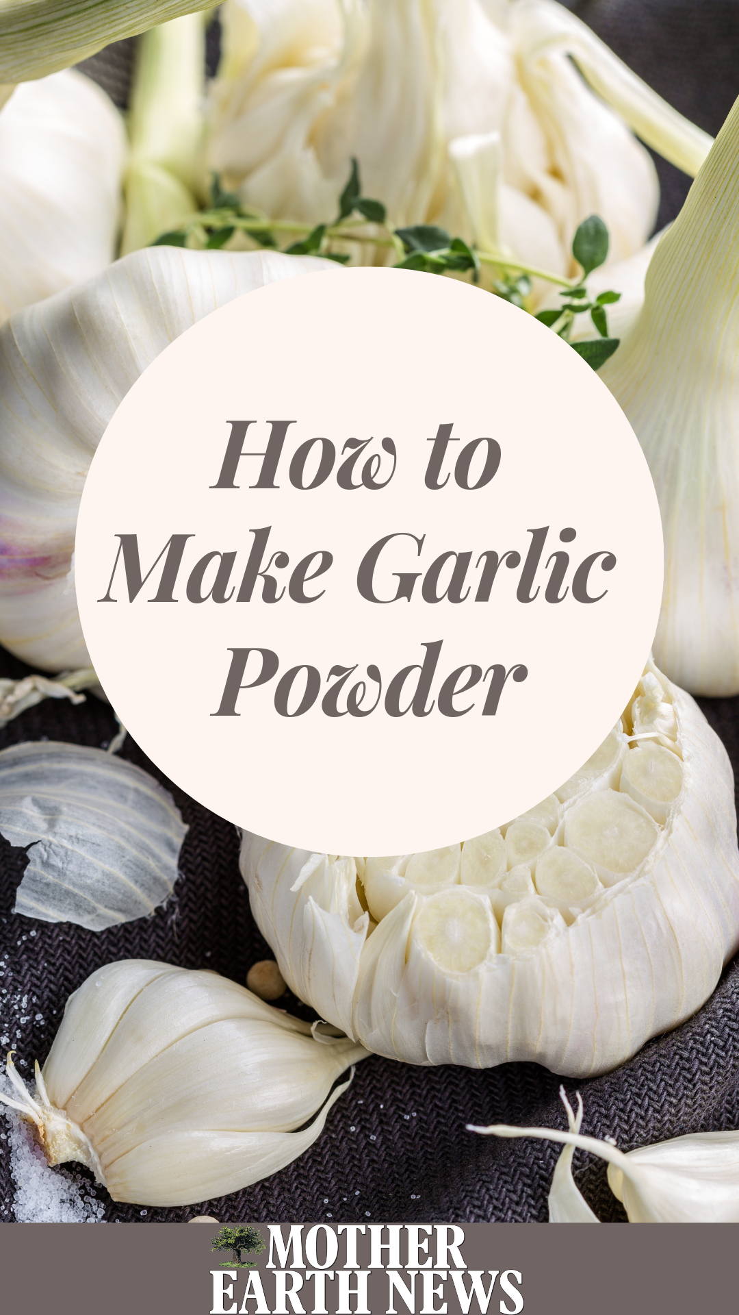 How to Make Garlic Powder in 2019 Garlic powder, Herb