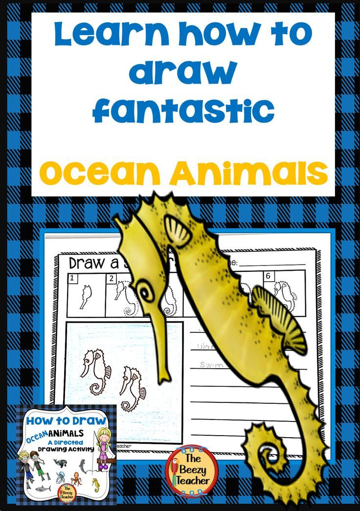 Ocean Animals A How to Draw Directed Drawing Activity in