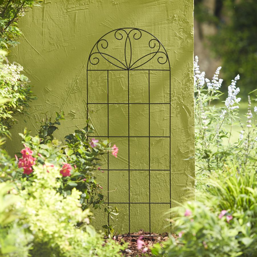 Shop Garden Treasures 20-in W x 60-in H Black Scroll Garden Trellis ...
