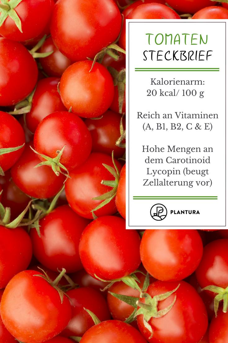 Tomaten Alles Wissenswerte Rund Um Das Beliebte Gemuse Findet Ihr Bei Plantura Tomaten Steckbrief Gemuse Gartentipps Gemuse Anbauen Anbau