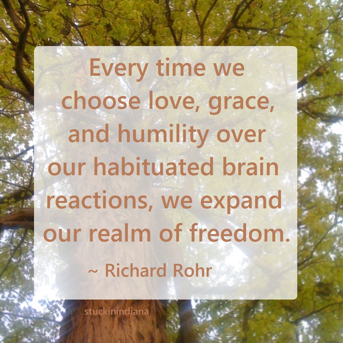 Every Time We Choose Love Grace And Humility Over Our Habituated Brain Reactions We Expand Our Realm Of Freedom Richard Rohr Quotes Choose Love Humility