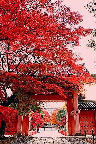 Photo of Kyoto, Japan