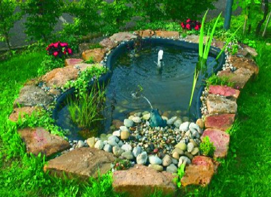 Small ponds for gardens garden pond plant advice the for Koi pond plant ideas