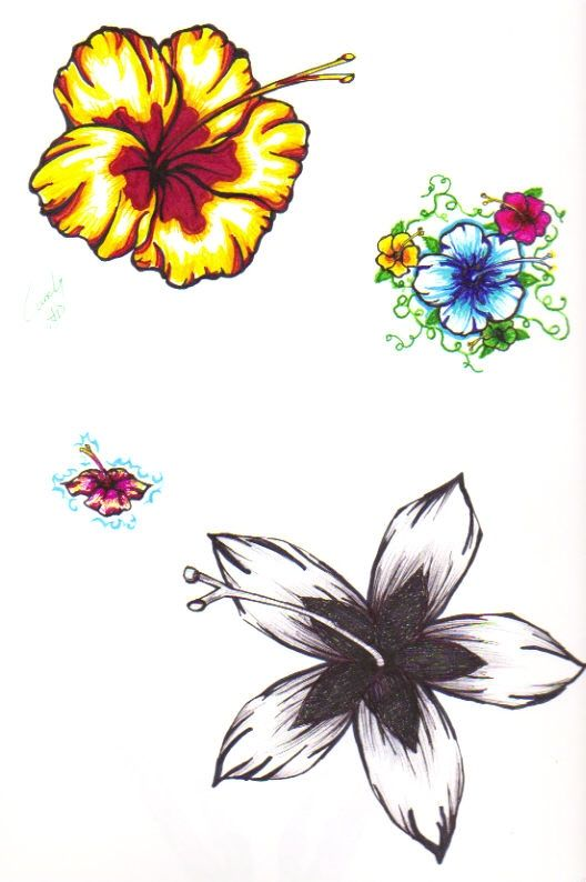 a04656ce22724 Hibiscus Tattoos By SnipersAngel On DeviantART | Tattoo Ideas ...