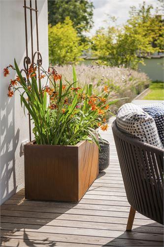 cortenstahl garten terrasse produkte, pflanzgefäß aus cortenstahl. mit schönem rankstab für terrasse oder, Design ideen