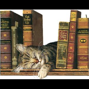 Un gatto non dormirebbe mai su un libro mediocre.  Harold Weiss