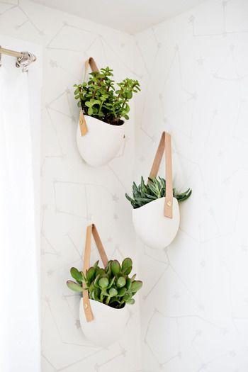 ベッド周り 観葉植物 Hashigo 出窓 ベッド周りではありません など