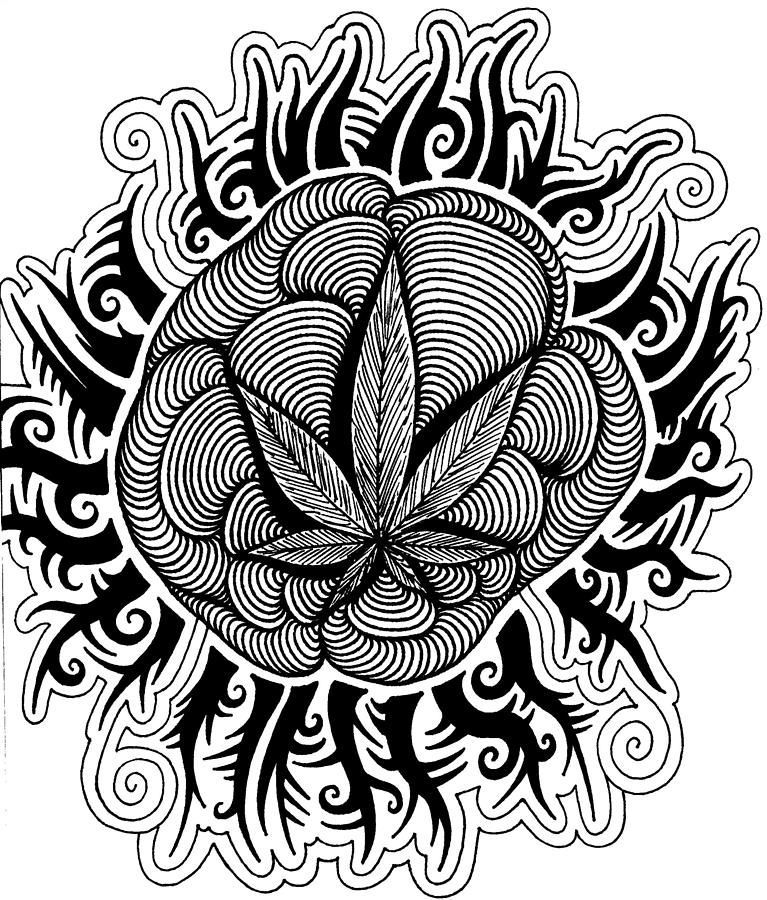 Sun By Andrew Padula Free Adult Coloring Printables Free Adult